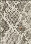 Roberto Cavalli Home No.6 Wallpaper RC17099 By Emiliana For Colemans